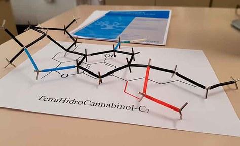 Identificados 16 nuevos componentes del cannabis